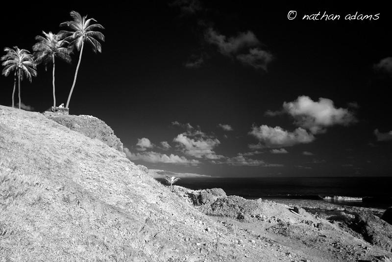 Barbados_Surfers Journal_CRW_7738_Nathan Adams