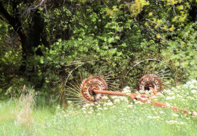 Rake, Nebo Scenic Loop East of Payson, Utah, 2000