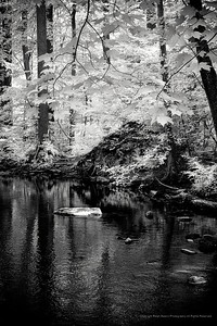 Pequonnock River Valley in Trumbull, CT in Infrared