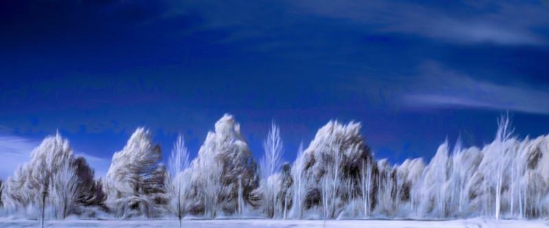 winter world ...