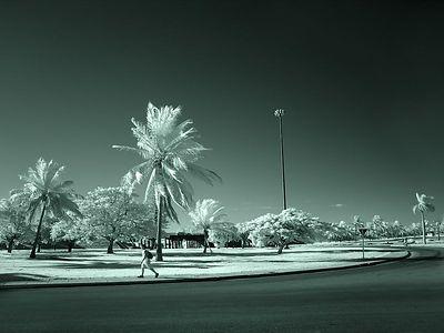 Varadero Cuba -5308