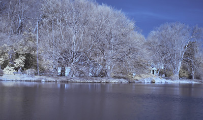 Infrared Photography I