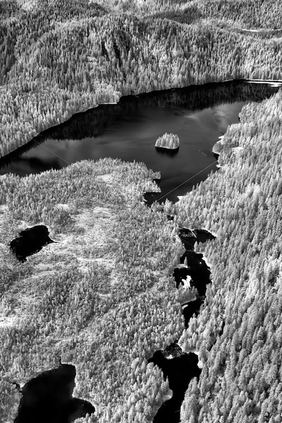 Flying over Lakes and Forests
