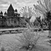 The Echmiadzin Gardens