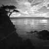 Sunset at the Lone Cypress