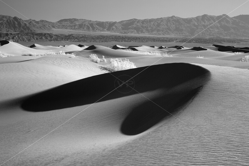 Shadows and Dunes