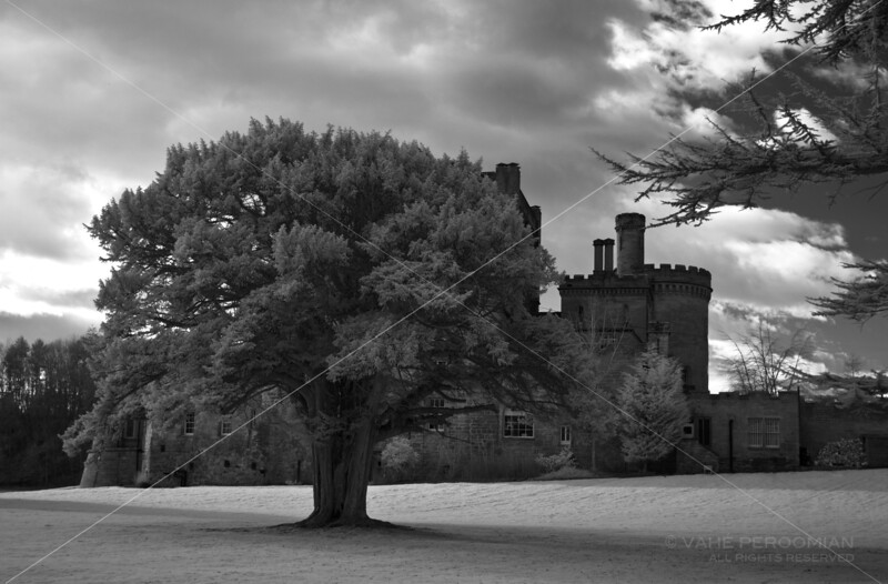The Grounds of Dalhousie Castle
