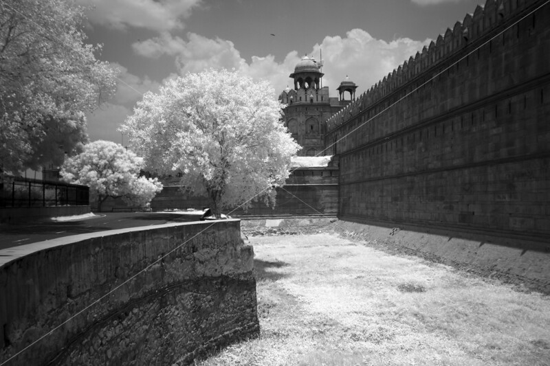 The Red Fort Moat