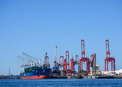 Ship Docked at Port Newark