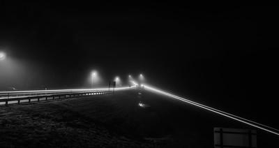 Foggy Parkway Trails