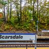 Scarsdale x2