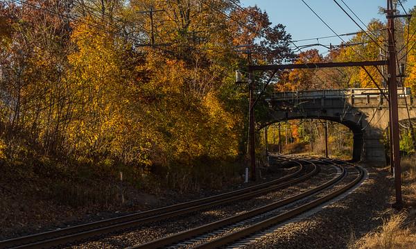 Curved Autumn Rails