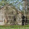 Rev Charley's PMS, Inglewood Farm, Alexandria, La 032616 004