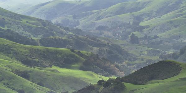 Foggy Coastal Hills
