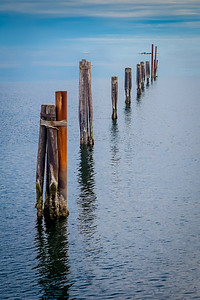 Pilings, Port Angeles Harbor, Port Angeles, WA