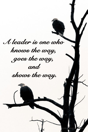 A leader is one who knows the way, goes the way and show the way. Ian Bailey Photography prints and quotes.
