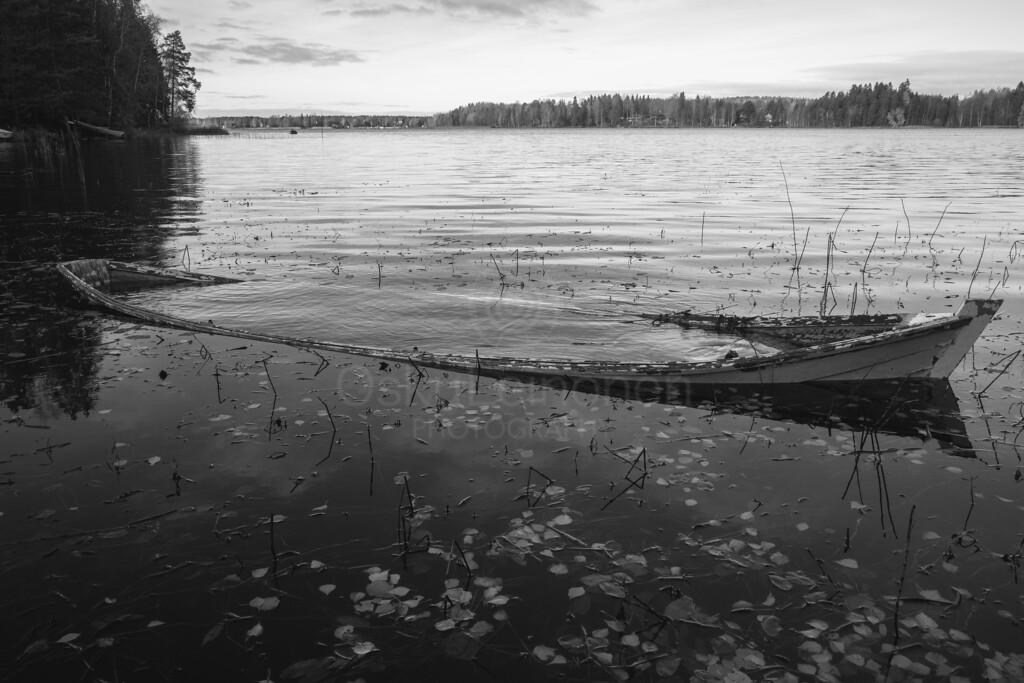 Weathered Rowing Boat II