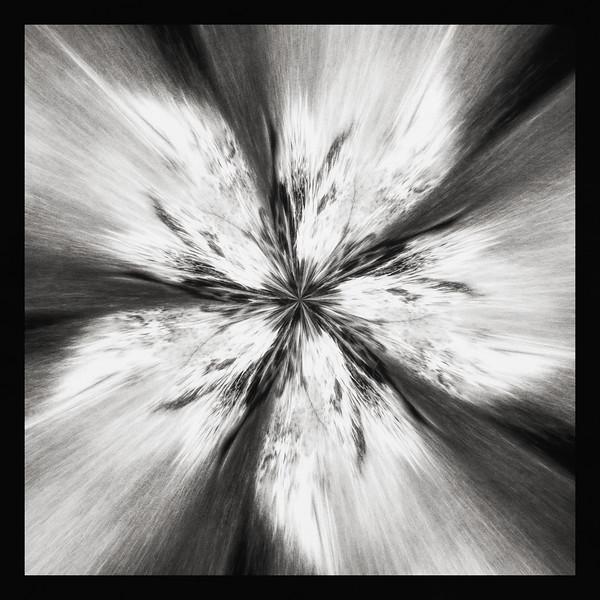 Flower Whirl BW