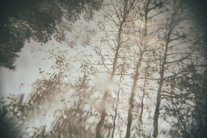 Chromatic Reflection III