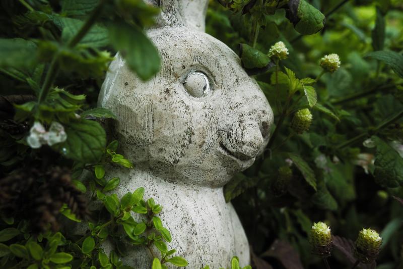 Concrete Bunny II (Unique)