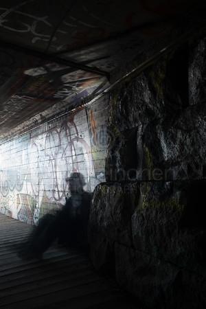 Between Two Lakes II (Tunnel)