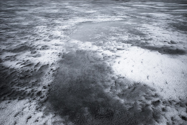 The Ice Leaves VI (Bare Ice)