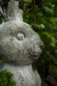 Concrete Bunny I (Be The First)