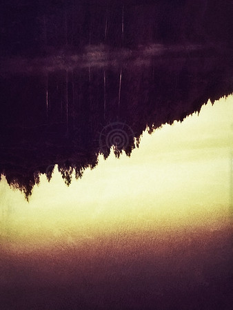 Trees (Pulse)