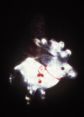 Elf Riding a Reindeer