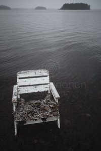 Spirit Of the Winter Lake I (Garden Chair)