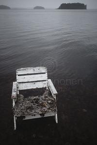 Spirit Of the Winter Lake I (Garden Chair)