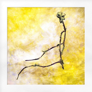 Twig (As Spine)