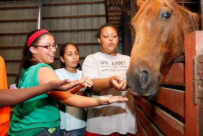 The Innovative-Thinker's Camp at horse ranch in Mishawaka 6-24-14