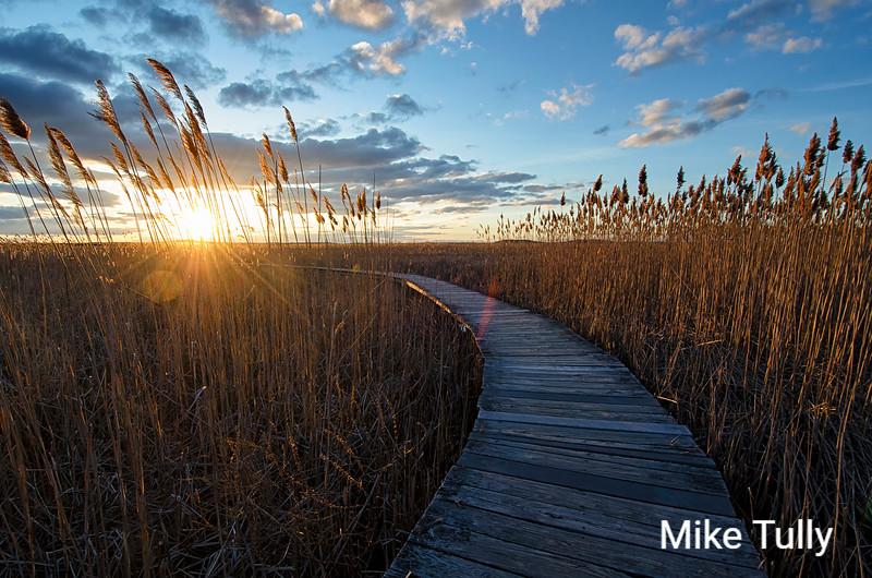 Vernal equinox sunset on the Marsh Loop