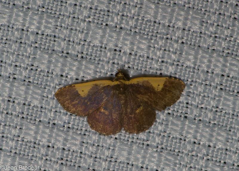 5365, Cerro Azul, Panama, 18 juin 2014