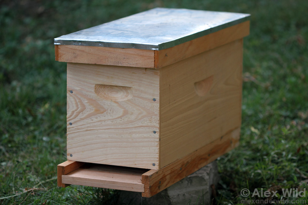 A small nucleus hive is useful for starting new colonies or raising queens.