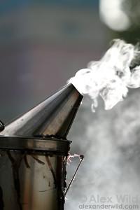 A bee smoker.