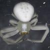 Crab Spider -