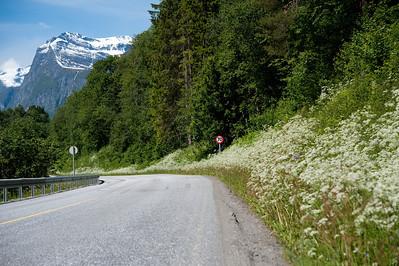 20100623as12-36-55 Sunndalen