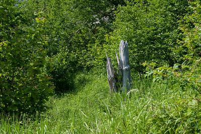 20100623as15-06-59 Sunndalen