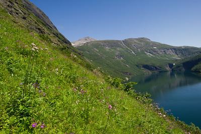 tafjord feltarbeid