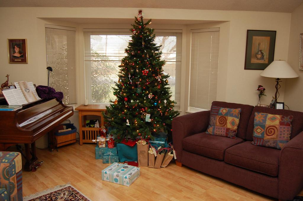 Parents Christmas tree.