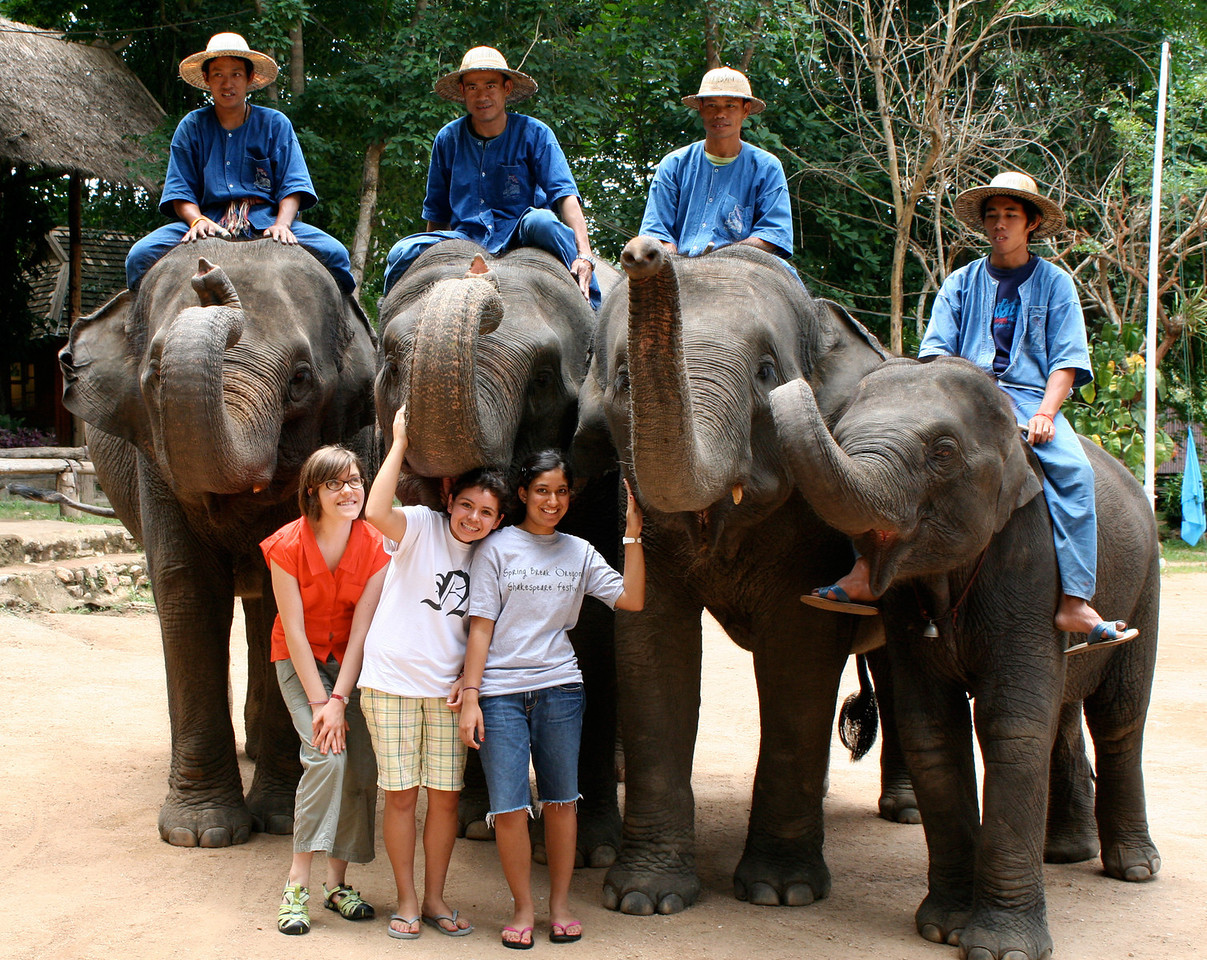 005_3_girls_4_elephants_6x9_300