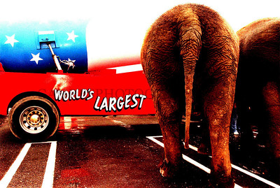 MBO/06-12-02 The Cole Bros. Circus 'boasts' a big show at Solomon Pond Mall on Wednesday.  Photo by Jeff Gahres