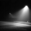 <b>Fog Under Lamps</b> - Imagine the sound of bullfrogs, and you're there.