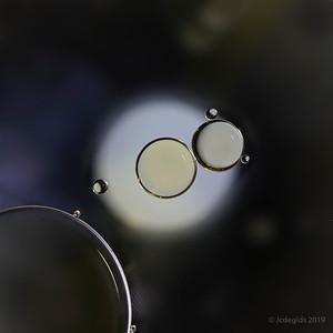 Olie_in_water_JC12330-Edit-Editc_JD_LEO0419LE