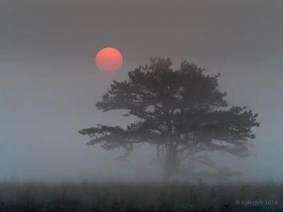 Sunrise_JC00991c_JD_KWA0519LE