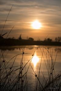 Sunrise_JCD1118c_JD_KWA0719ZO
