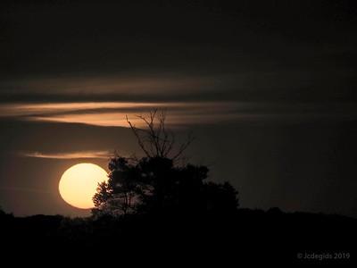Sunrise_JC10098c_JD_KWA0719ZO