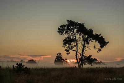 zonsopgang_Nik35-70mm_JCD9426c_JD_KWA0718ZO